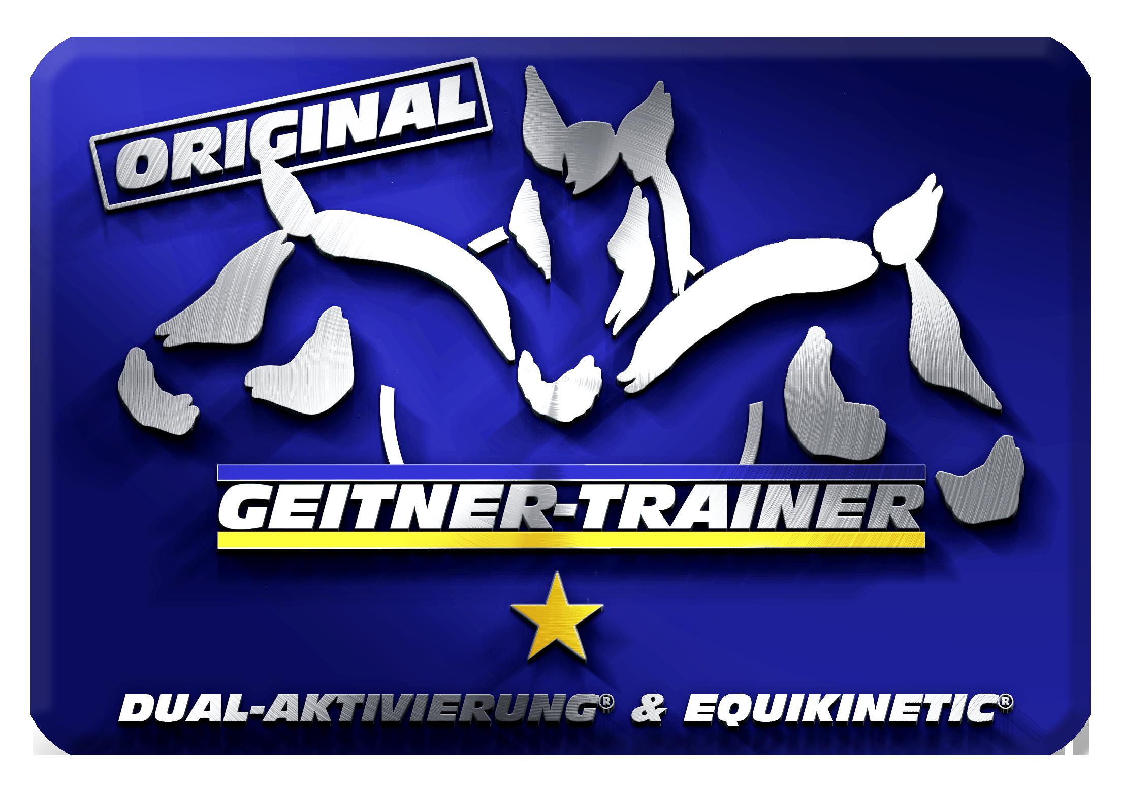 Sieger-Pferdetraining